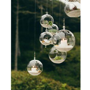 Set of 3 Hanging Glass Orbs Globe Terrariums